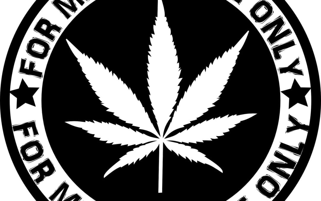 Study shows legal marijuana products too strong for pain relief