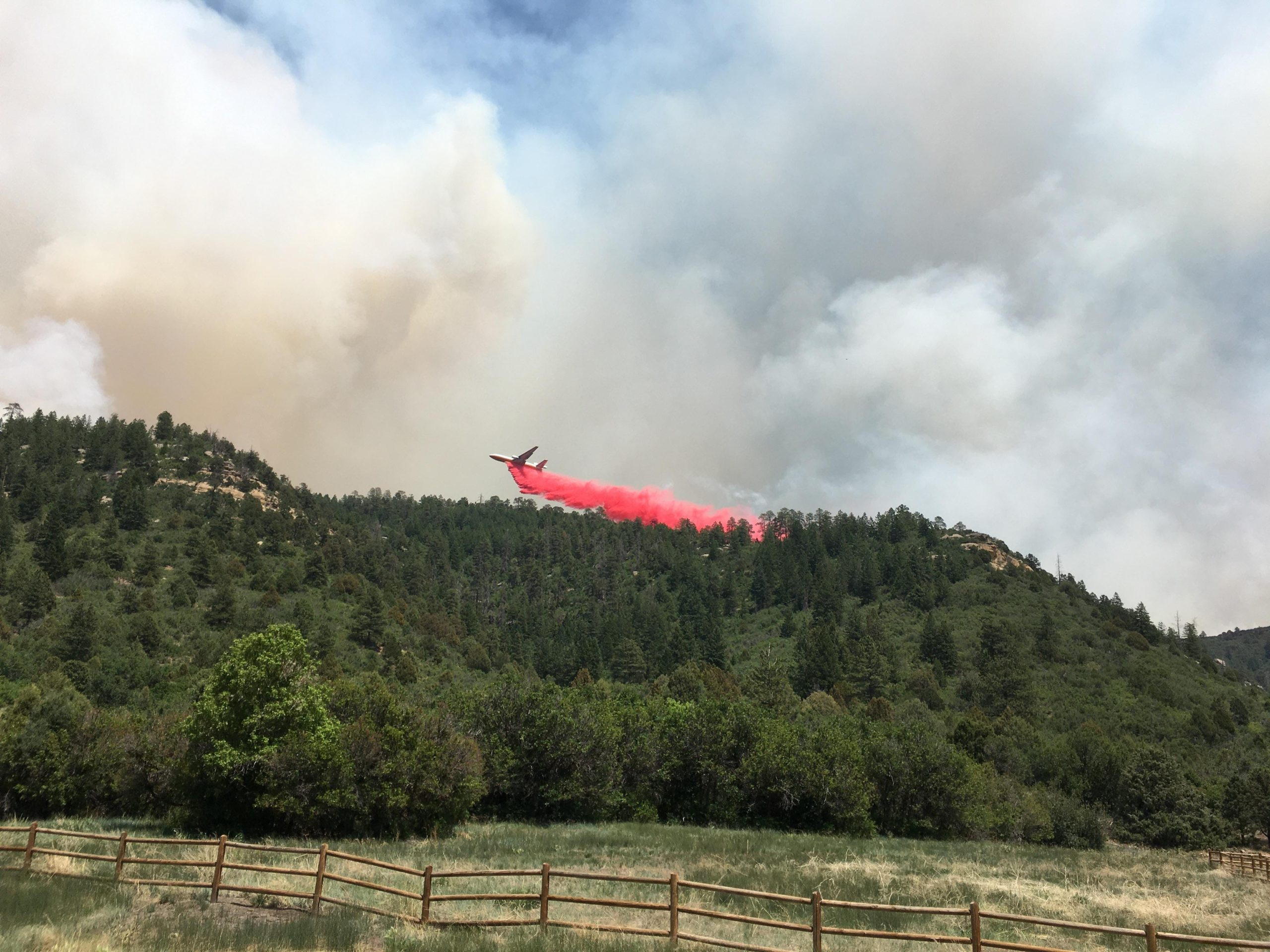 Bear rescued as fires continue to burn in southwest Colorado