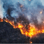 California And Colorado: Climate-Driven Transformation Of Wildfires - PopularResistance.Org
