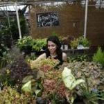 Colorado gardening: A beginner-friendly, year-round planting calendar