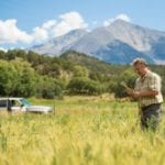 Colorado whiskeys look to Colorado family farms for inspiration, ingredients