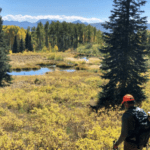 Hunters and Anglers Cheer Reintroduction of Colorado Public Lands Legislation   Theodore Roosevelt Conservation Partnership