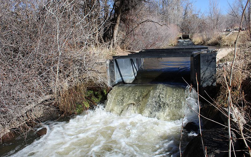 Water speculation is 'all the problems' in one, Colorado group warns