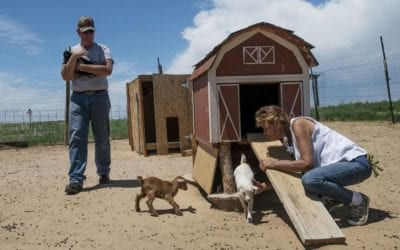 Agricultural ministry southeast of Colorado Springs fulfills a longtime dream