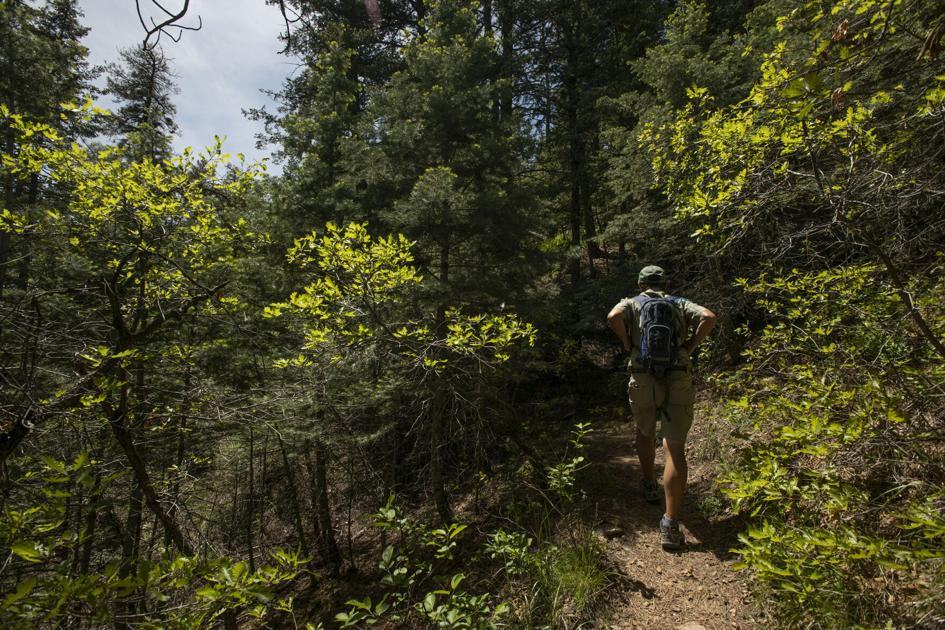 Happy Trails: This southern Colorado trail delights 'off the beaten path' | OutThere Colorado