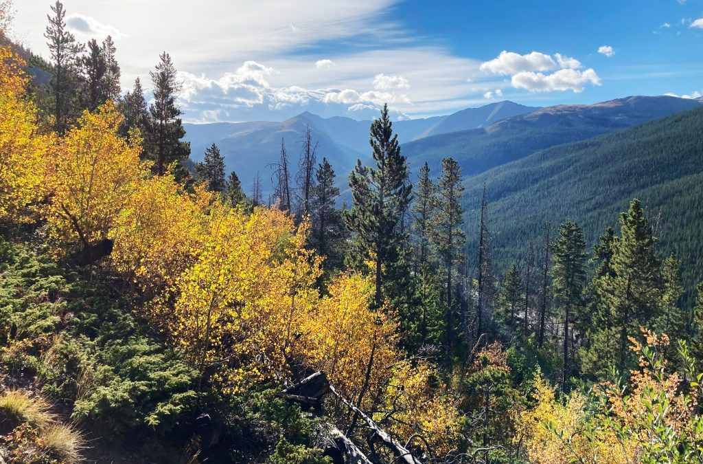 Scenic drives for leaf-peeping, fall colors in Colorado